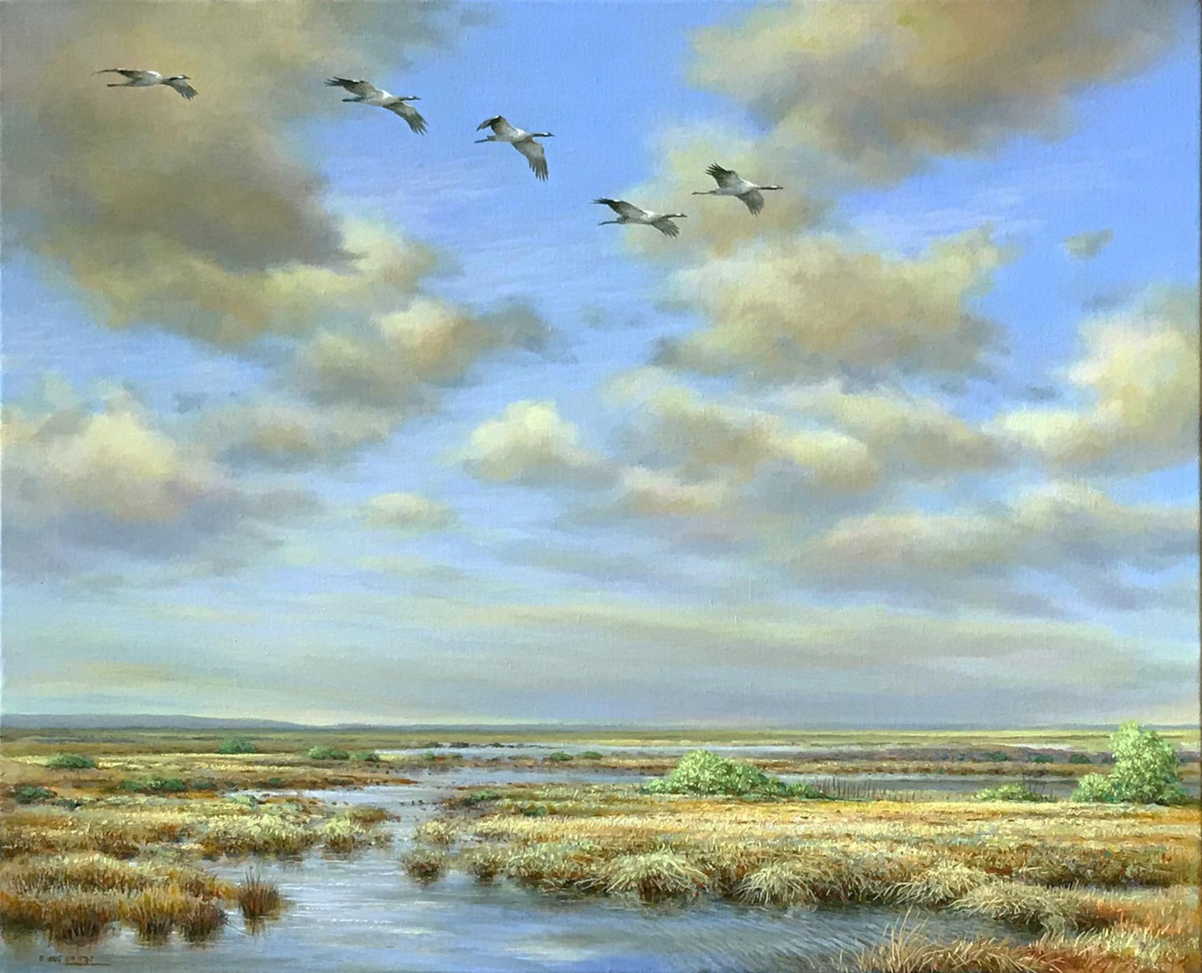 kraanvogels in het veen